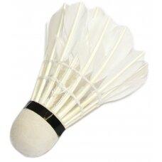 Badmintono plunksnelė