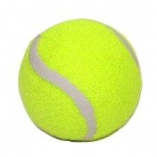 Lauko teniso kamuoliukas