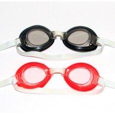 Plaukimo akinukai